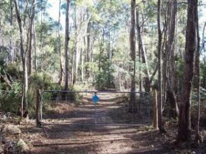 Larcombe's Road, Reedy Marsh