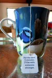 Blue wren mug