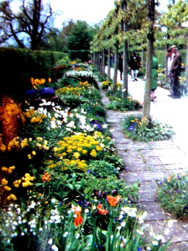 CanadianSouv.OldGardentories 016