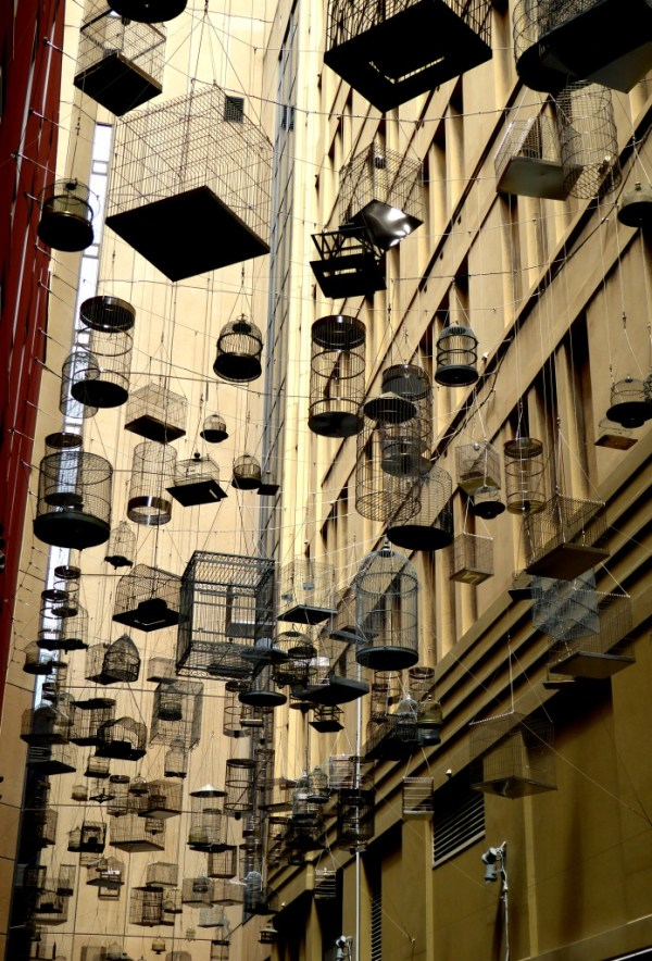 180 empty birdcages