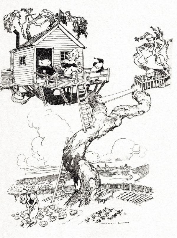Albert in his little enclosure. Illustration from The Magic Pudding.