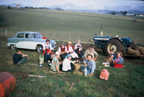 Lunch time for the bean picking gang. Note the thermos flasks and wicker basket