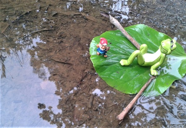 Gnome and frog rafting.