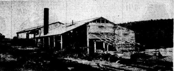 Tarana Timber Mill 1930s