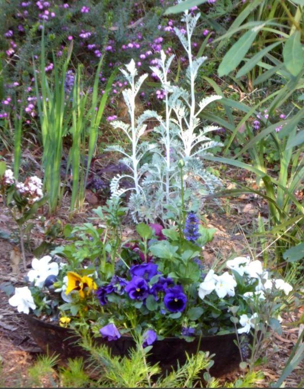 Weber Bar-b-que garden