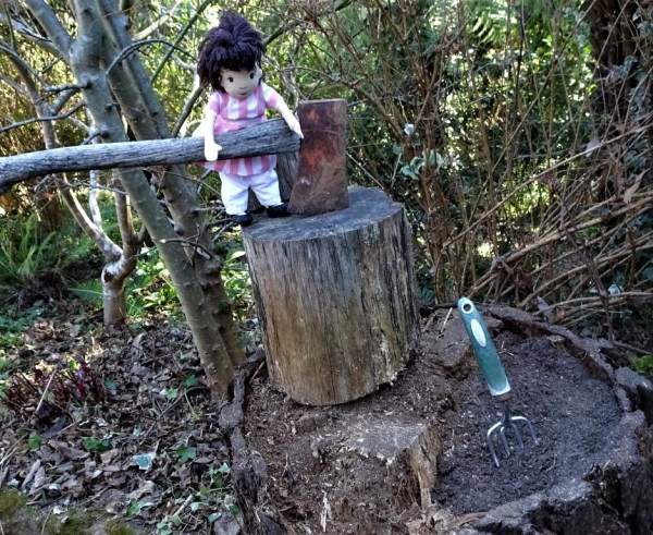 Milly watching the stump project.