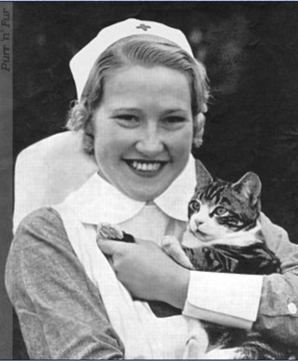 Cat mascot with British Nurse in WWII