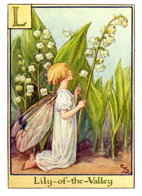 Lily-of-th-valley fairy.