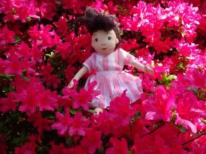Milly in the azaleas