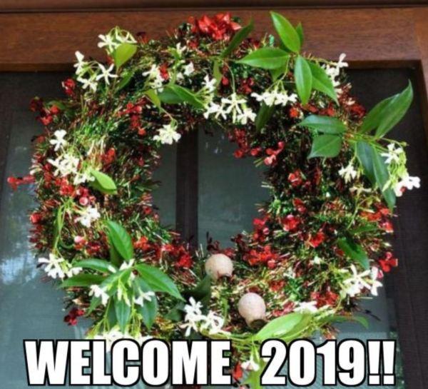 Star jasmine wreath
