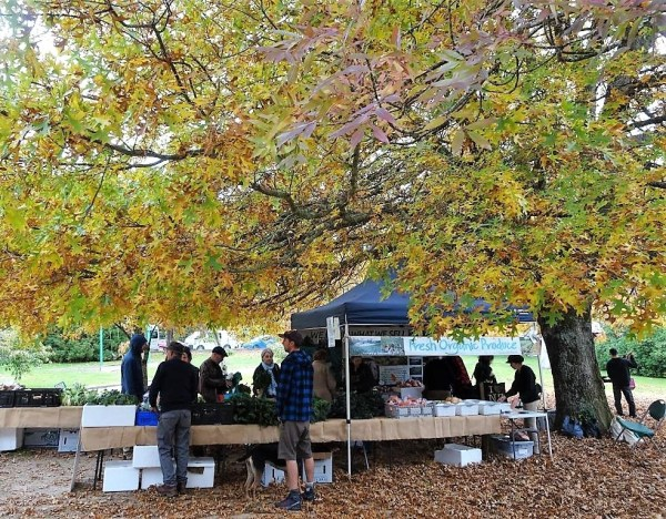 Blackheath autumn Farmer's Market.