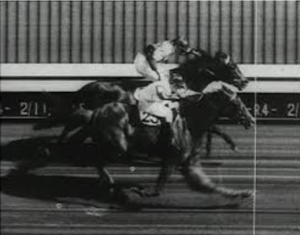 Rimfire wins Melburne Cup by a nose.