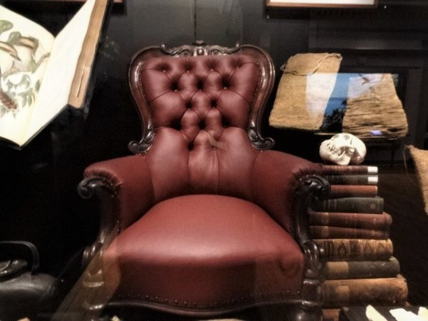 Gerard Krefft's armchair on display at the Australian museum.