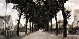 Abb. 3: Paulinenaue in den 30ern: Die Brandenburger Allee