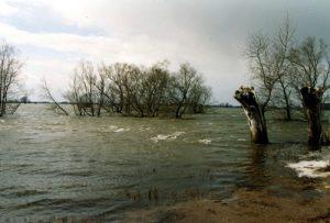 Frühjahrshochwasser der Havel bei Abbendorf, 2006