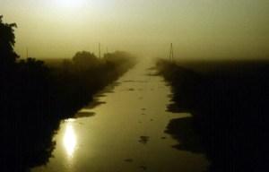 Morgennebel am Havelländischen Hauptkanal