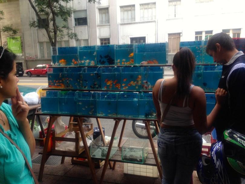Montevideo Sunday Market