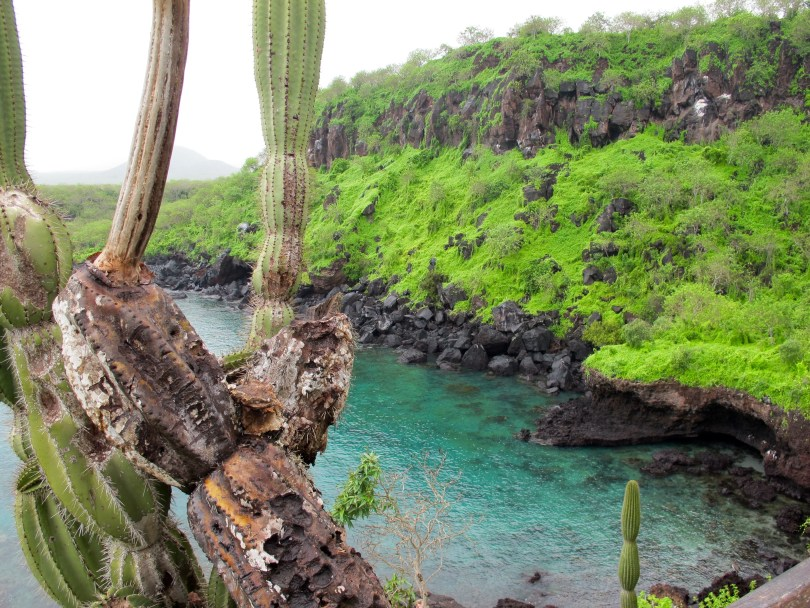 Questions about Galápagos and the best bay for swimming