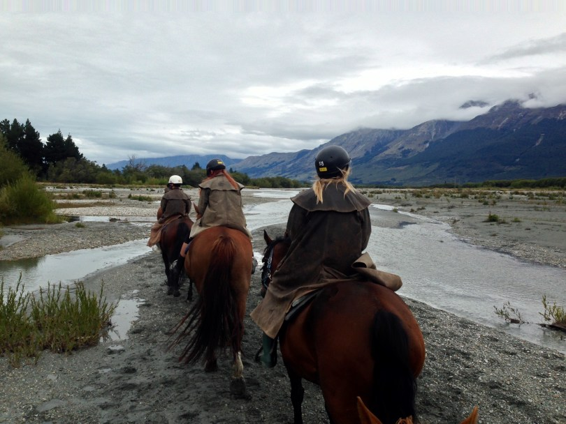 Horseback riding in Queenstown with horses on autopilot