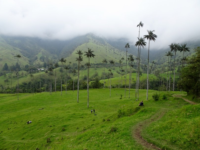 Cocora Vally in Salento Colombia, is one of the 21 sensational places to visit in South America.