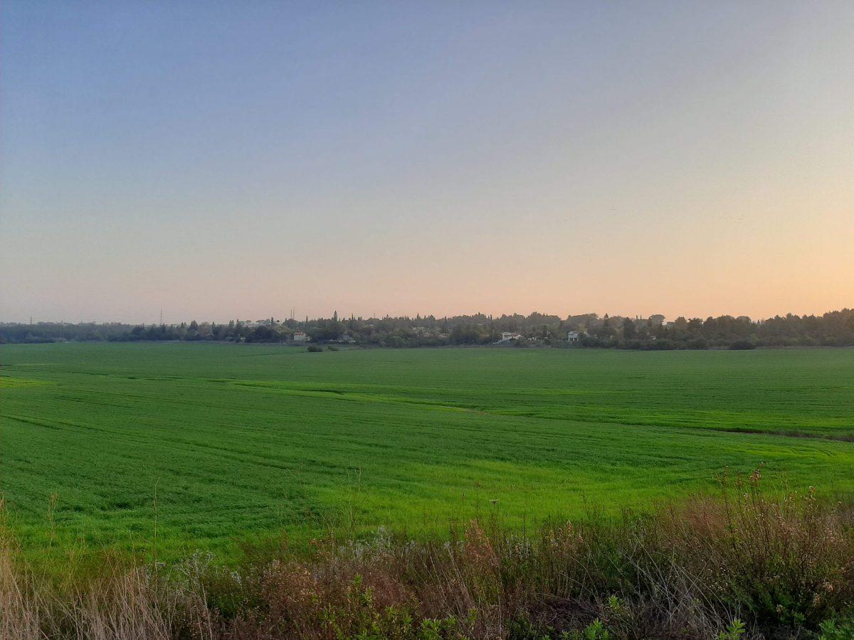 Farm land in Maccabim, Israel