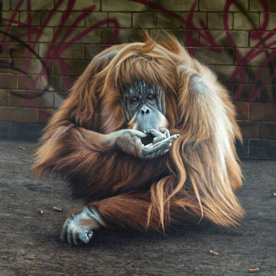 drag queen orangutan original artwork paul james