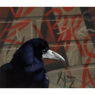 Mr B 3 Crow Paul James Artwork