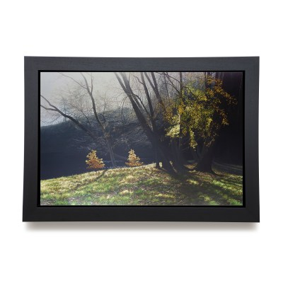 Depths of Autumn framed canvas