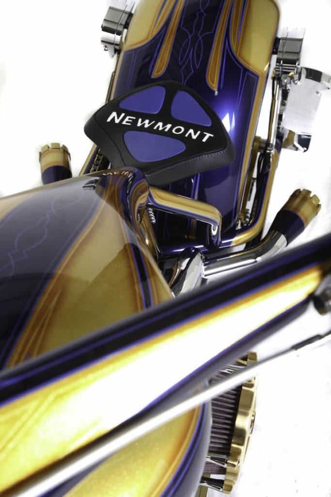 Newmont Bike Paul Jr Designs
