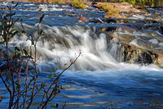 When water flows in the Sierra, life is good