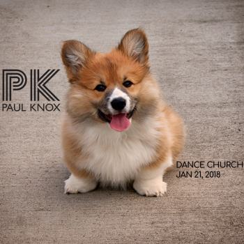 Dance Church January 21 2018 cover art featuring a Welsh Corgi