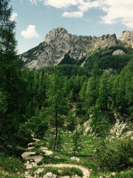 Winding path up to Triglav