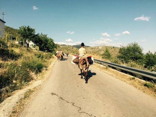 Family on horseback, PÃ«rmet valley, Albania