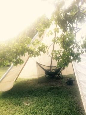 Teepee hammok sleep, Ilha Comprida, Brazil