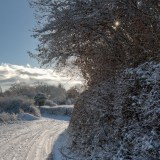 Snowy Lane Christmas gift