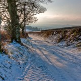 Snowy Lane, Devon, landscapes and nature photographer photography herefordshire 6089