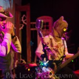 Steampunk Yule Ball 2014, event photographer photography Herefordshire music concert The Wattingers 6582