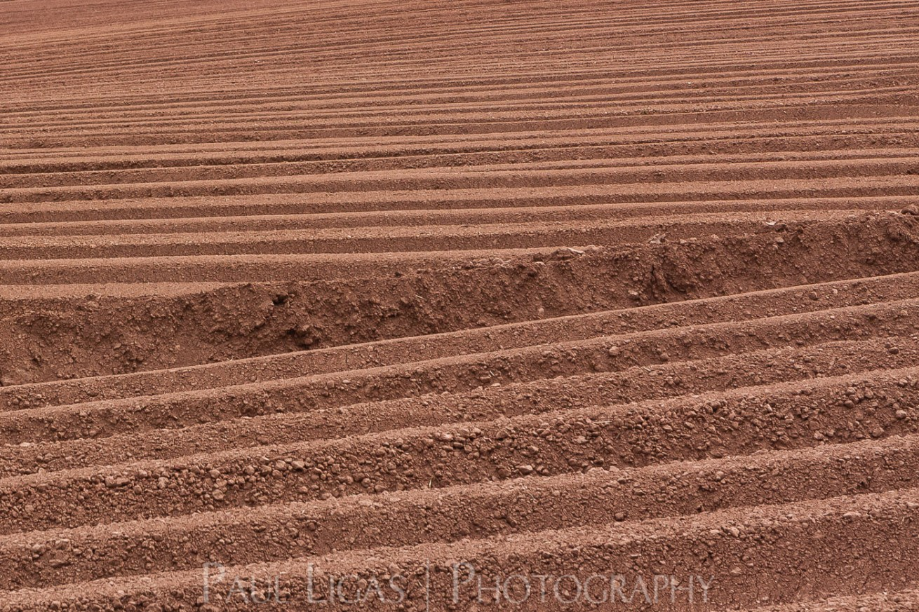 Furrows Bromyard farming agriculture photographer photography herefordshire 7163