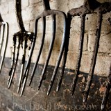 Garden Forks, fine art farming photographer photography herefordshire 0074