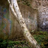 Graffiti in Elora, graffiti and decay urban photographer photography herefordshire 2024