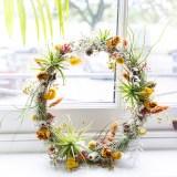Spiffy Daisy plants kokedama product lifestyle photographer photography Herefordshire-7312