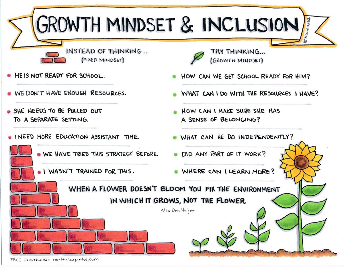 Growth Mindset Can Work But Who Needs To Grow Whole