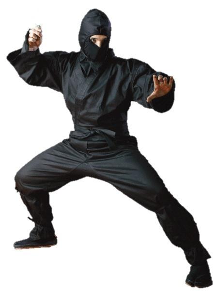 Ninja training