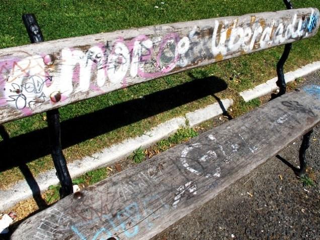 jardim-do-amor4