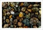 Pebbles web