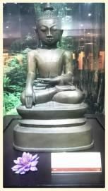 buddha-lily