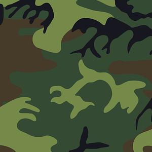 camouflage pattern image