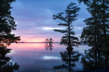 Early Morning on Reelfoot Lake