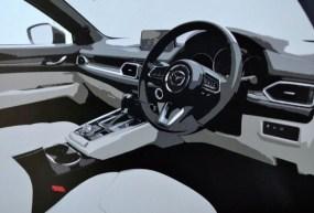 Mazda CX-8 leak 2