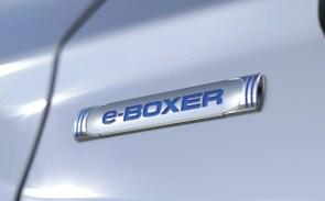 e-Boxer 6